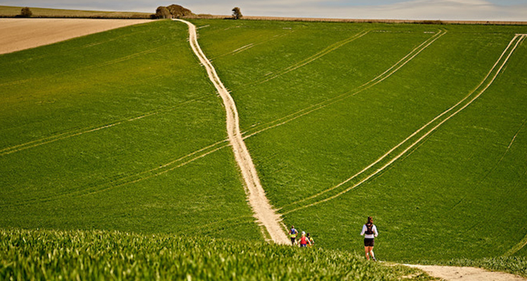 People hiking through fields